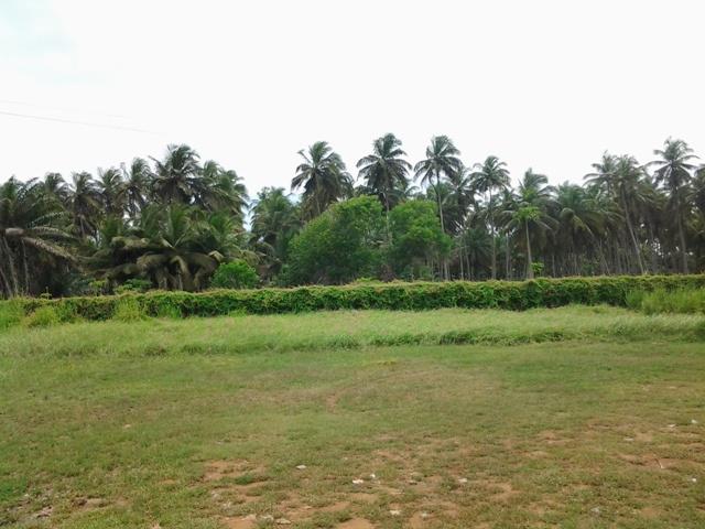 Vue de profil du paysage de Grand Bassam